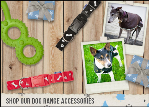 Shop our dog range accessories